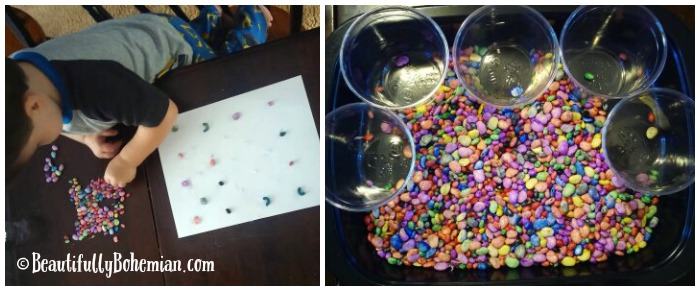 Sorting and glue activity