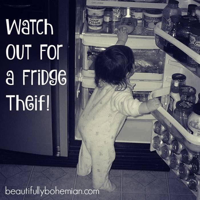 Watch out for a fridge theif! What you should be toddler proofing!