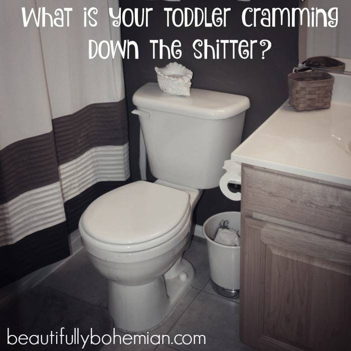 What is your toddler cramming down the shitter? Things you should toddler proof RIGHT NOW!
