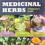 Rosemary-Gladstars-Medicinal-Herbs-A-Beginners-Guide-33-Healing-Herbs-to-Know-Grow-and-Use-0