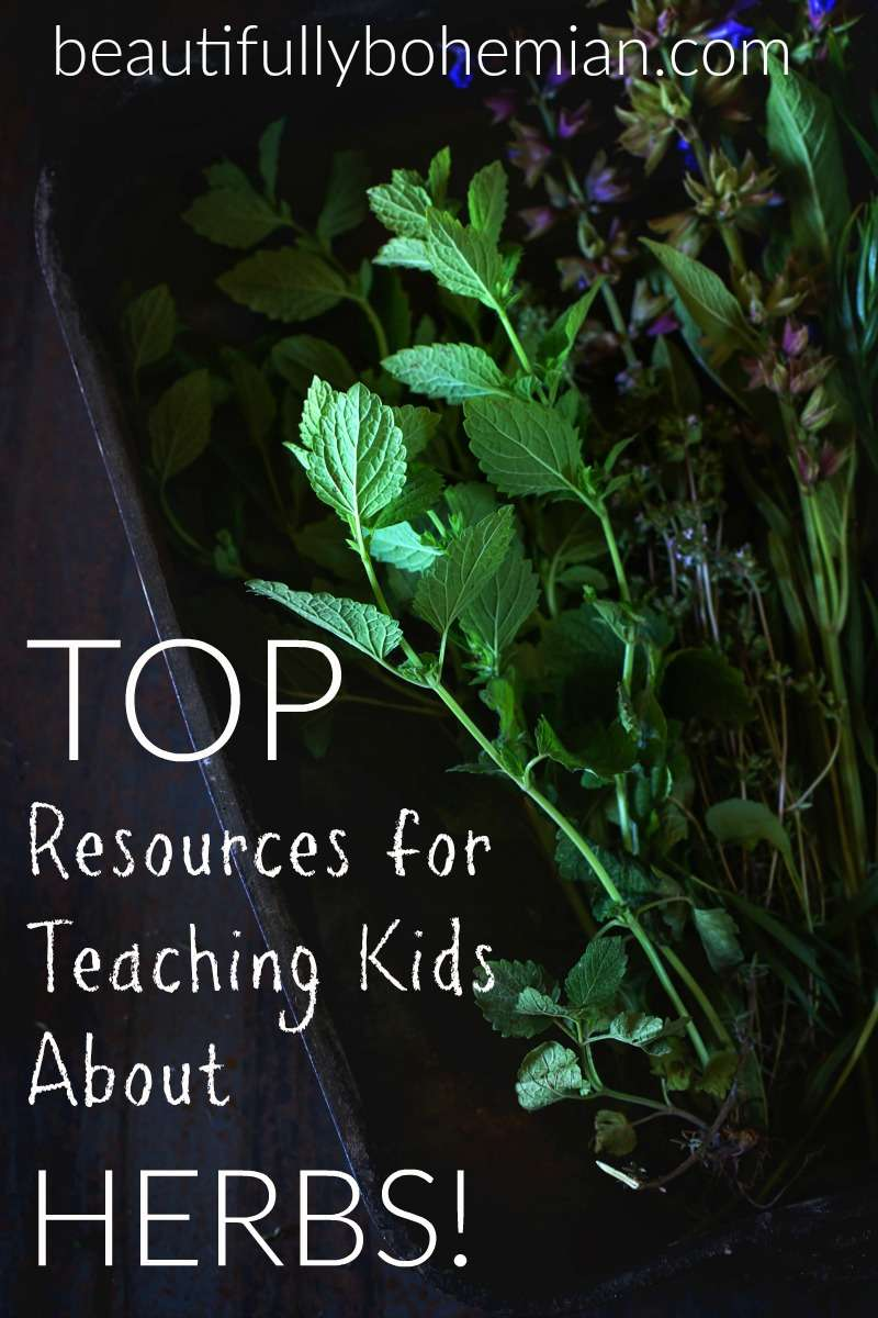 Top resources for teaching kids about herbs!