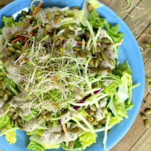 Low-Histamine Vegan Salad with Chia Ranch Dressing #vegan #lowhistamine #veganranch #salad #easy