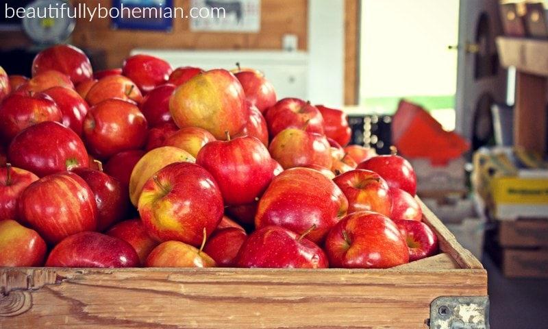 saving money on produce