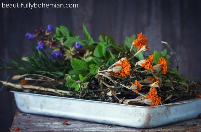 Learn how to make your own herbal apothecary