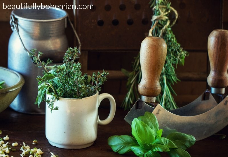 Creating your own herbal apothecary