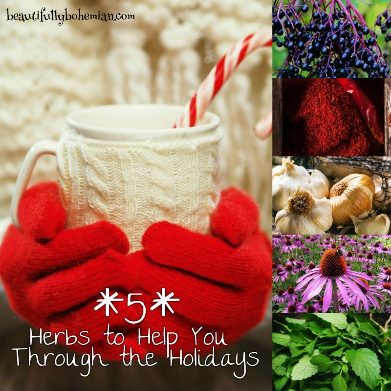 5-herbs-to-help-you-through-the-holidays-