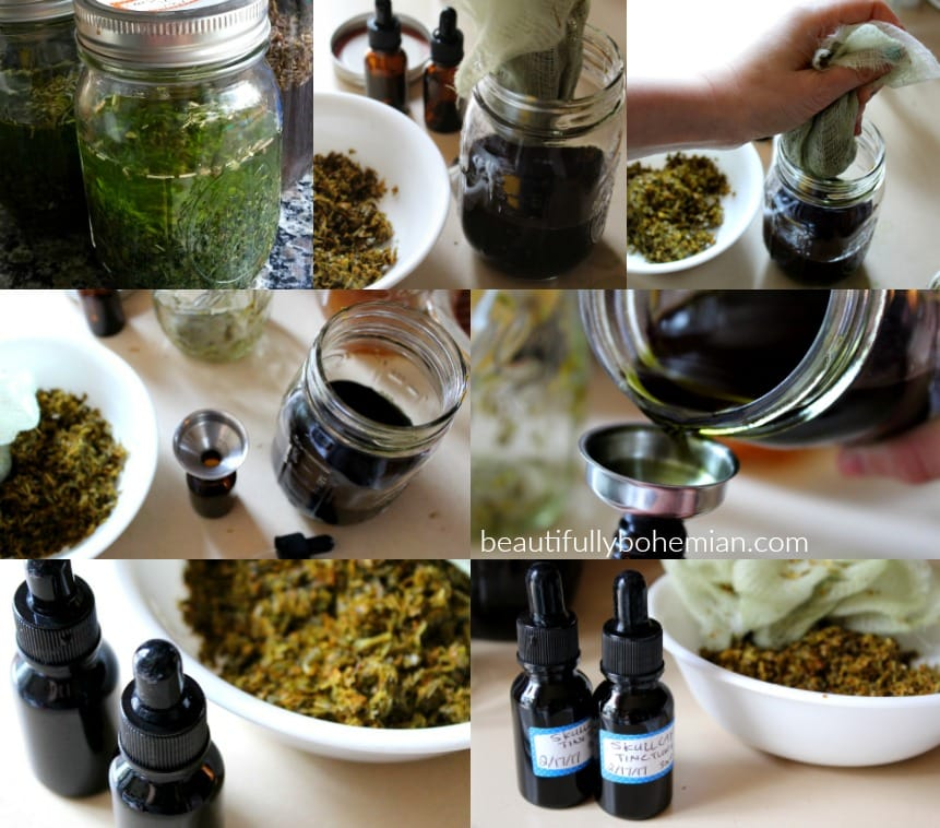 Let's get started and make a tincture!!