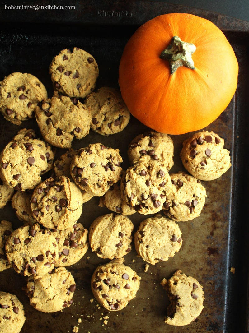 picture of vegan pumpkin cookies on a tray with an actual pumpkin