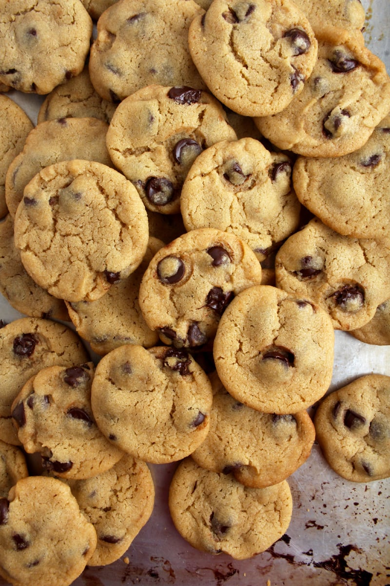 Two dozen chocolate chip cookies piled on top of each other.