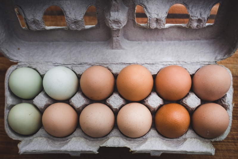 substitute eggs in baking: image of a carton of eggs opened.