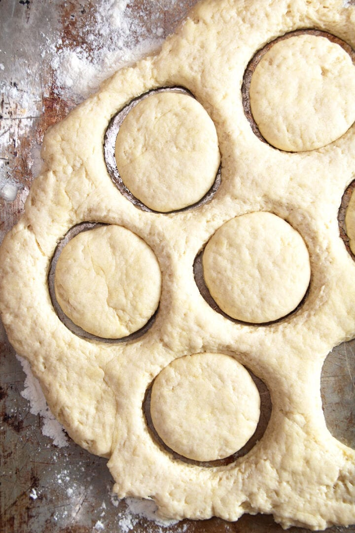 cutting circles out of the vegan biscuit dough